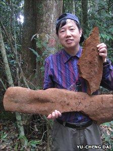 Китайцы нашли самый большой гриб